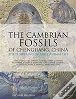The Cambrian Fossils Of Chengjiang, China