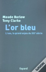 L'Or Bleu ; L'Eau Le Grand Enjeu Du Xxi Siecle