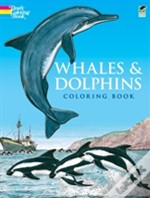 Whales And Dolphinscolouring Book