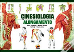 Cinesiologia do Alongamento