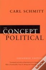 Concept Of The Political
