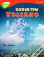 Oxford Reading Tree: Stage 13: Treetops Non-Fiction: Under The Volcano