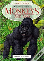 VISUAL INTRODUCTION TO MONKEYS